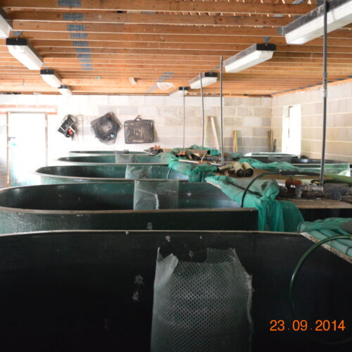 Some of our holding tanks